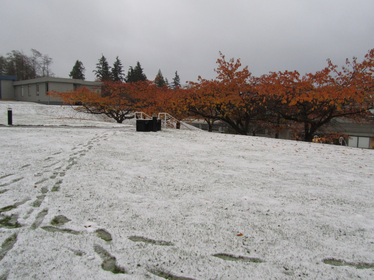 Up at SFU burnaby today we had snow..
