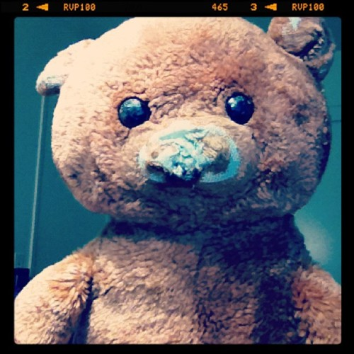 reneordona:  19 year old teddy bear. :) (Taken with instagram)
