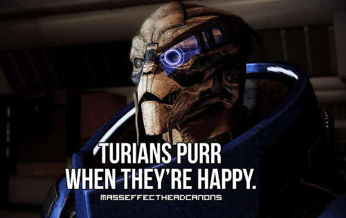 "For your listening pleasure, an mp3 of a cat Turian purring. ""Turians purr when they're happy."" Submitted by rprambles."