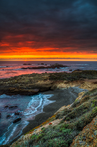 Point Lobos Setting Sun (by Guerrewhoa)