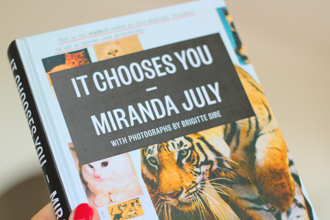 Miranda July's new book, It Chooses You, which includes interviews she conducted with people she met through ads in the PennySaver. (via It Chooses You | For Me, For You)