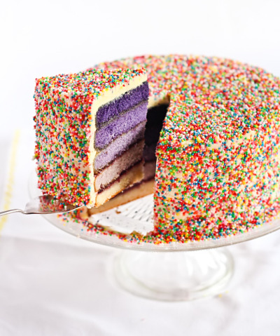 Purple Ombre Sprinkle Cake // Recipe via Raspberri Cupcakes