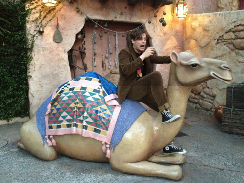 gublernation:  me riding a camel while drinking coffee at the AMAZING MIND BLOWING INCREDIBLE Disneysea theme park  in Tokyo Japan