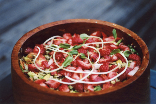 pandacake:  Strawberry Avocado Rainbow Salad * Romaine Lettuce * Arugula * 3-4 shredded Carrots * 1-2 Avocados * 3-4 tablespoons sprouted Pumpkin seeds * 2-3 tablespoons Hemp seeds * Handful Strawberries * Handful Sunflower sprouts (or any of your favorite sprouts) Dressing:  * 2-4 tablespoons Olive Oil * 2-4 tablespoons Bragg's Apple Cider Vinegar * Juice of 1 Orange or Lemon