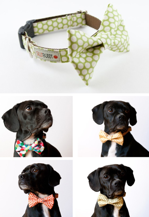 I am not one for dressing up your dog, but these are a cute and fun way to accessorize your pet without causing them any discomfort. You can purchase one here.