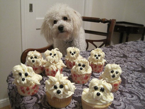 look its my dog! i wanna make these!