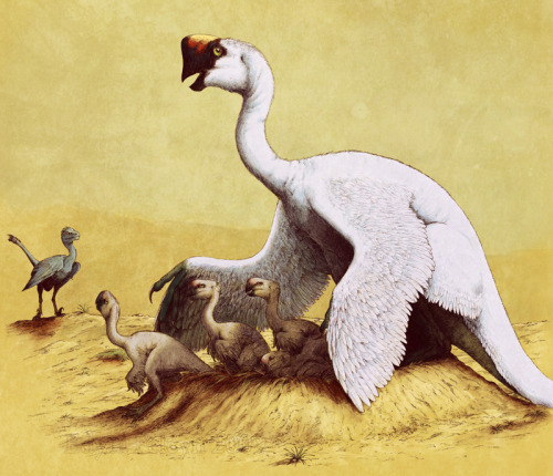 fuckyeahdinoart:  citipati with chicks by =Sheil