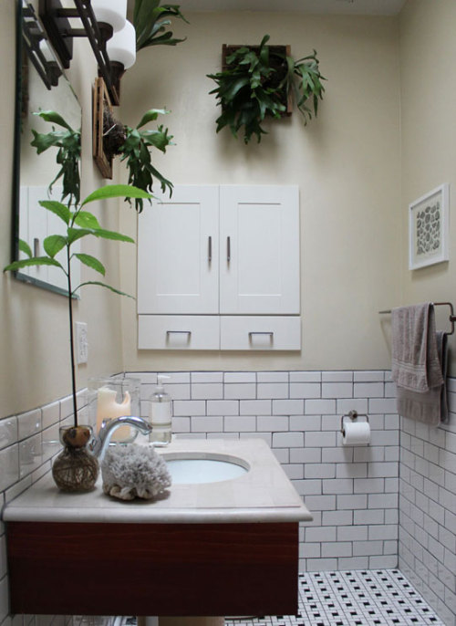 "I love elkhorn fern.  It really adds character to the room. (via Apartment Therapy ""Bradley's Mini Historic Echo Park Home"")"