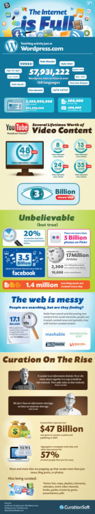 The Internet is full  mediafuturist:  Interest stats on 'the internet is full'