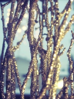 (via Holidays / sparkle spray painted branches and put in a vase- cheap and beautiful. great for the winter season)