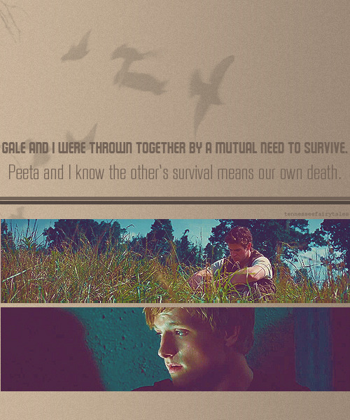 tennesseefairytales:  How do you sidestep that? - Katniss Everdeen