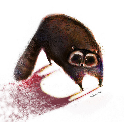 illustratosphere:  racoon by Neiko Ng