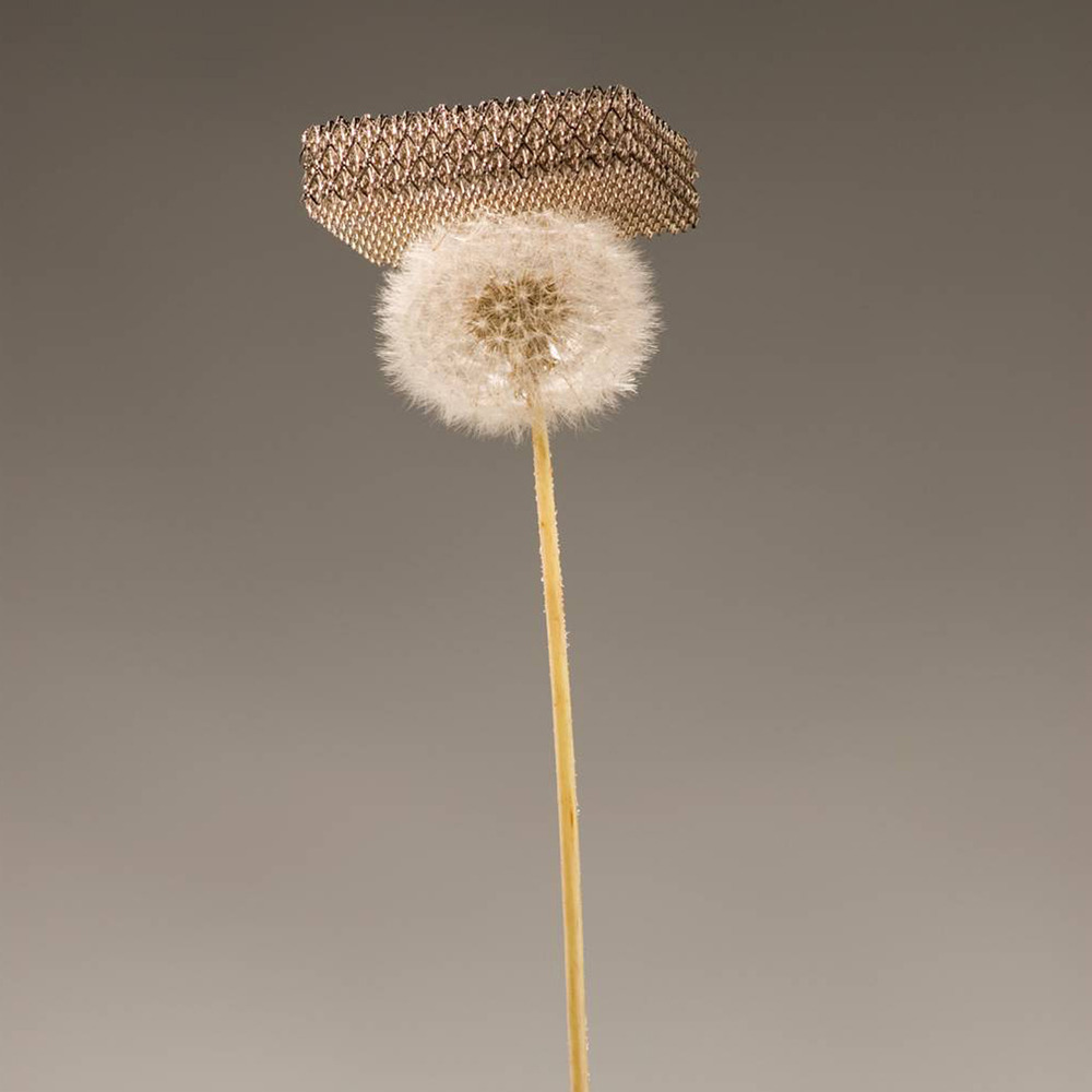 "Photo: World's lightest material can perch on top of dandelion fluffScientists at the UC Irvine, HRL Laboratories and the California Institute of Technology say they've developed the world's lightest material, so airy that it can perch on top of a dandelion's fluff. The ""micro-lattice"" consists of 99.99% air, researchers say. (Photo: Dan Little, HRL Laboratories LLC)"