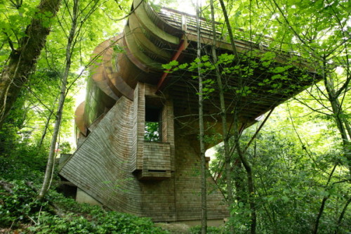 (via Whimsical Wooden Tree House Brings Nature, Music to Life in Portland, Oregon | Modern House Designs)