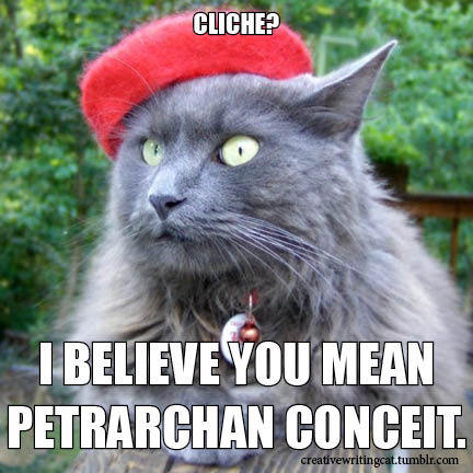 I believe you mean Petrarchan Conceit.