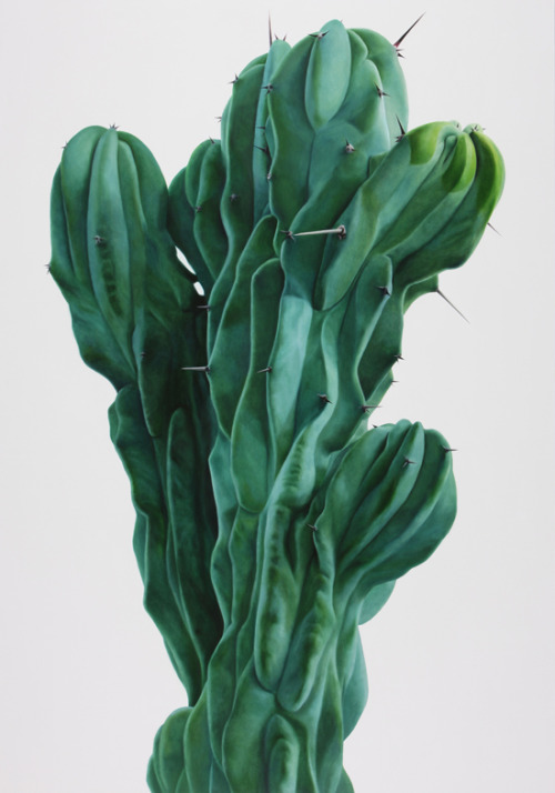 Cactus no.30 by Kwangho Lee, 2008.
