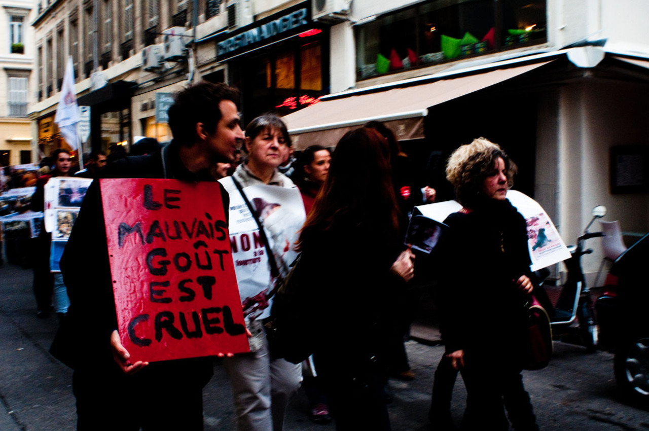 Anti-Fur manifestation. Marseille, 2011