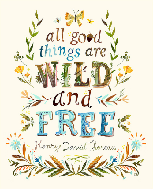 Seems like a good quote for foraging with The Amazings tomorrow.