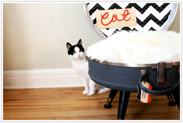 Suitcase Cat Bed | Camille Styles Anyone who has a pet knows that if you want a stylish piece of anything for them, you need to shell out big bucks! It seems like as soon as they add diamantes to a cat collar they add another twenty bucks. And don't get me started on cat beds. Even the ugly cat beds are expensive. When I saw this cat bed I thought - that's cute but I bet it's so…. wait, I can make it! Personally, I would remove the lid because my cat has a habit of getting stuck in things, and I could just see coming home and finding her stuck in the suitcase. I know Sophie would love this - furry, off the ground and I love it because it won't ruin my decor! Haha! Though anyone who has a cat also knows that regardless of how expensive or well made a bed is for them, they will still sleep in yours!