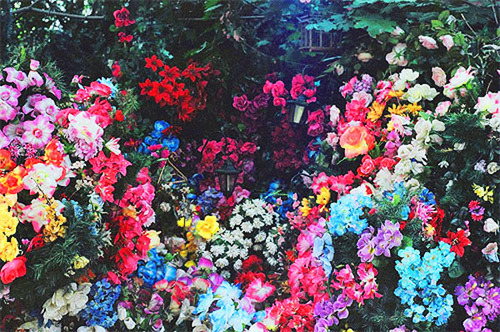 royal-rebel:  floral elegance