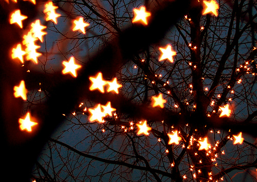 You should probably know that I love sparkly lights in trees.