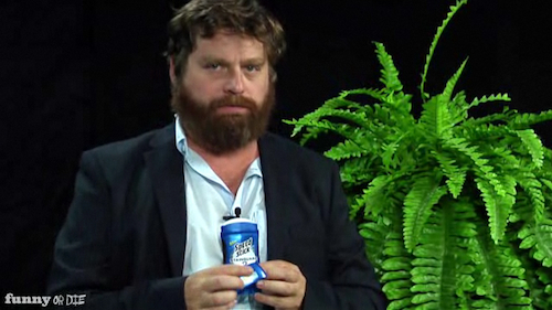 Zach galifinakis…between two ferns- YOUTUBE NOW