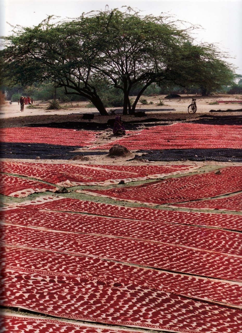 The textile equivalent of a luscious strawberry field, from Pauline van Lynden's Rajasthan.