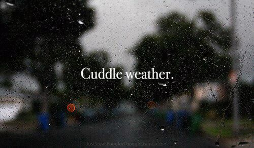 cuddling weather on Tumblr