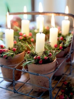 (via Christmas… / Small flower pots with xmas greens and white candles)