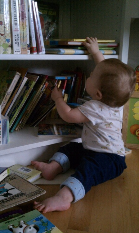Every day. He plops his baby bum in front of the bookshelf and goes to town taking each book out and judging it by its cover. If he really likes it, he'll crawl on over to me and sit nestled into my lap and I'll read him the book up until he decides to get another one… repeat.