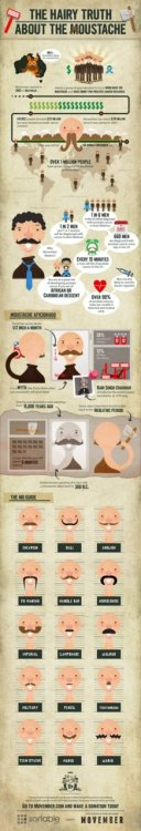 The Hairy Truth About The Moustache Infographic [Click to view larger]