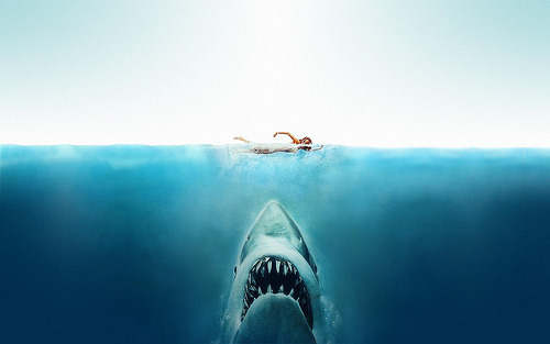 surferdude182:  Jaws (by Tim Van Damme)