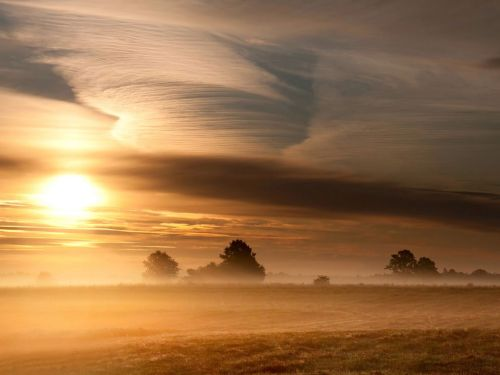 WOW! nationalgeographicdaily:  Morning Landscape, LithuaniaPhoto: Eugenijus Rauduve