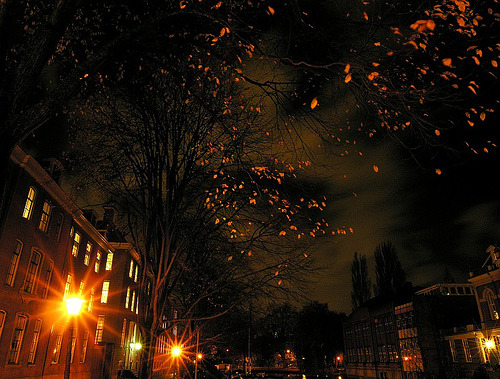 Late November Night in Amsterdam (by /ivan)