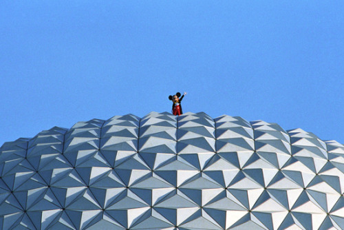 """Hey! I can see the Tree of Life from here!"""