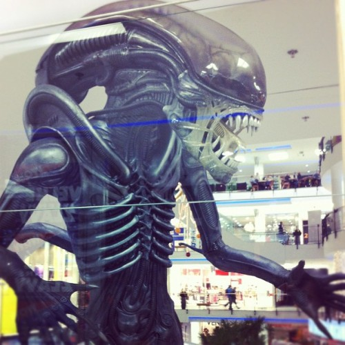 sharuzen:  #alien (Taken with instagram)