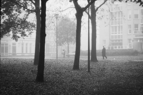 Man walking alone in the fog on Flickr.