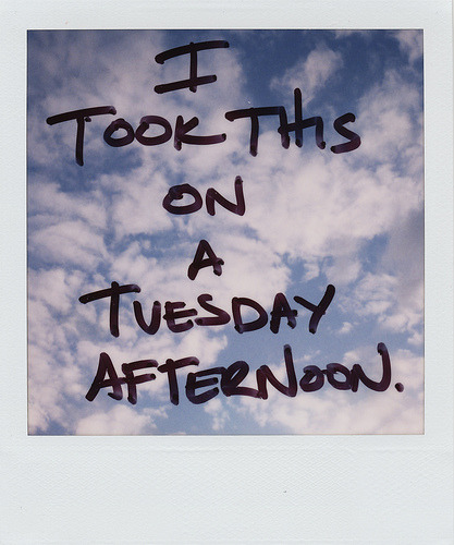 sinuses:  itookthisonatuesday (by danske)