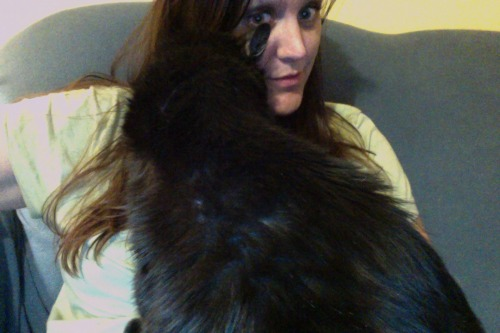 gpoyw: holy buckets, this cat is needy. at least i'm home now.