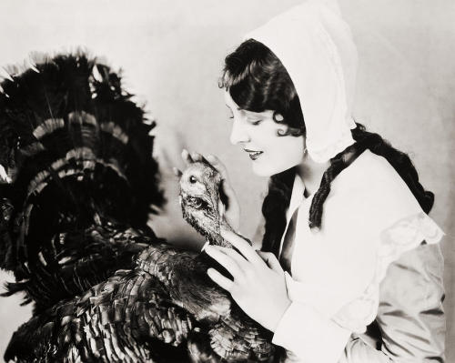 theloudestvoice:  Billie Dove (This is one popular turkey!)