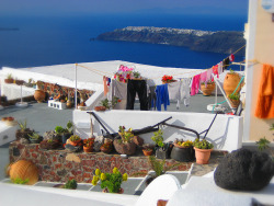 Drying. photo by me. Santorini Island.