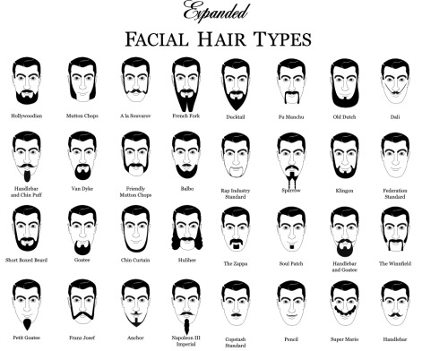 Types of Facial Hair.