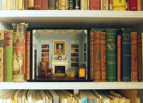 just-young-wild-and-free:  Shelf room by sweetington on Flickr.