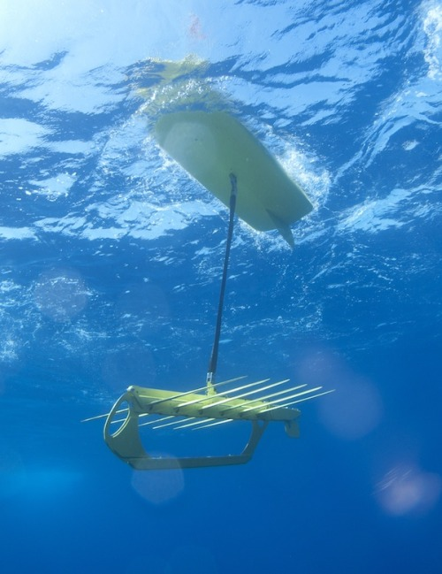 emergentfutures:  Liquid Robotics' Wave Gliders Begin Historic Swim Across Pacific  Four Wave Gliders—self propelled robots, each about the size of a dolphin—have left San Francisco for a journey that combined will total 60,000 km  Full Story: IEEE Spectrum   Free information; to the highest bidder