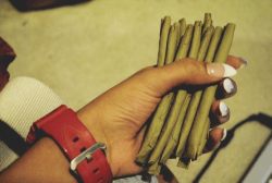 ohwildchildyou:  BLUNTS for daaaaaaaays   Geez-uss