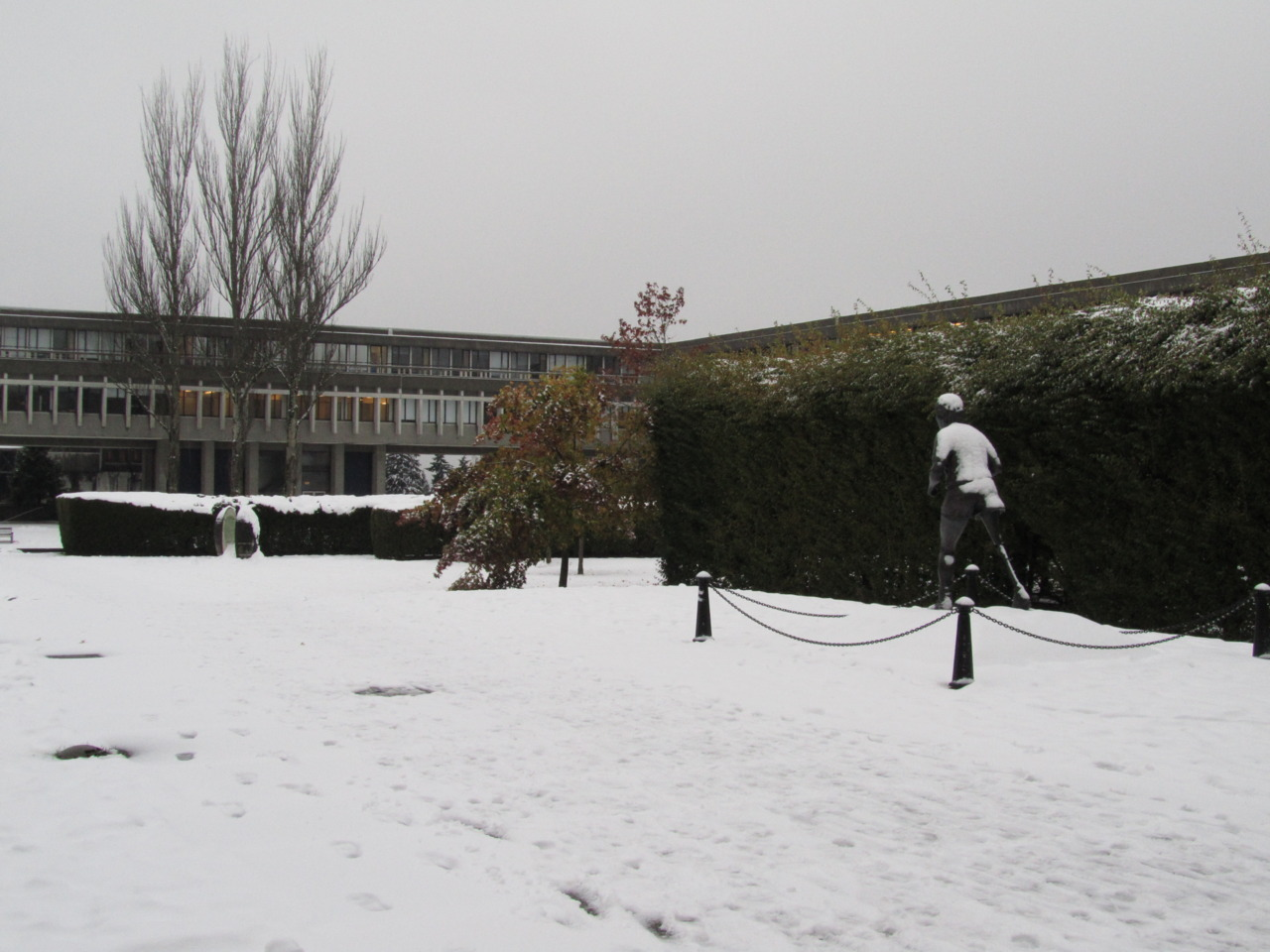 Yeh, there was snow up at SFU a few days ago… Terry Fox was runnin in it.