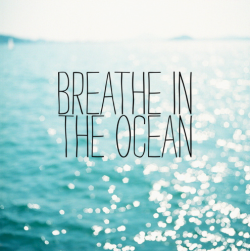 embrace-ocean:  (via imgTumble)