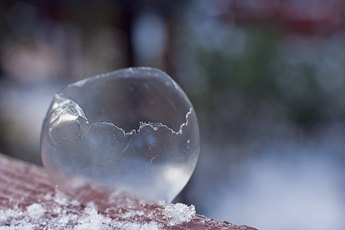Did you know that you can freeze bubbles? These temperatures are perfect for using that left over bubble mix from the summer. Go outside on any day when it's below 32 degrees F and try this: blow a bubble and then catch it on the bubble wand.  Wait a few moments while it freezes- it will turn into a cool crystal ball before it shatters! You can also make icy crystals with your bubble solution! To do this: dip a large loop in the bubble solution – but dont blow a bubble. Instead, watch the crystals grow. The will form a lattice structure! Too cold to go outside? You can learn how to make your own crystal ball bubbles in the freezer with soap by checking out the site below… http://www.wikihow.com/Make-a-Frozen-Bubble