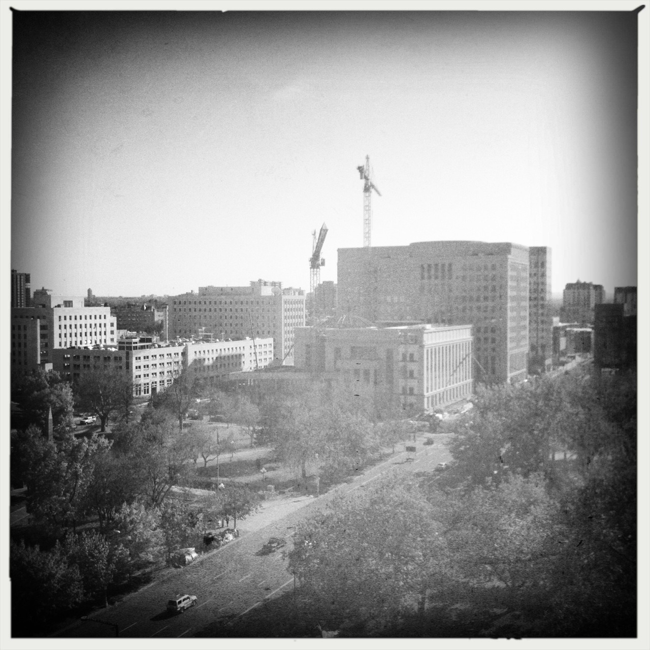 The Cranes, 11/9 Taken with Hipstamatic, Buckhorst H1 Lens, AO BW Film, No Flash.
