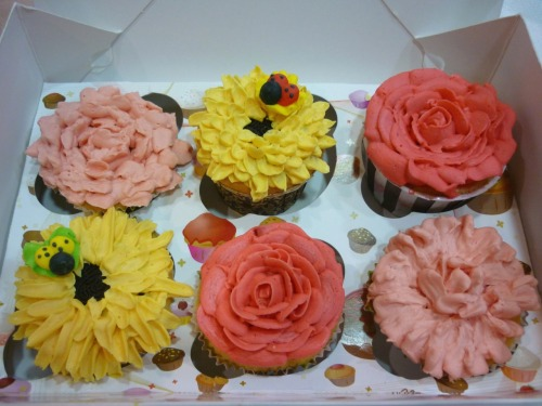 Cupcake roses, sunflower and carnation